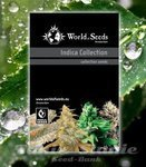 WORLD OF SEEDS - Indica Collection