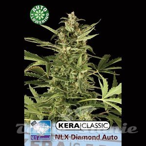 KERA SEEDS - N.L.X. Diamond Auto